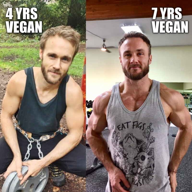 4-7 yrs vegan[3962]